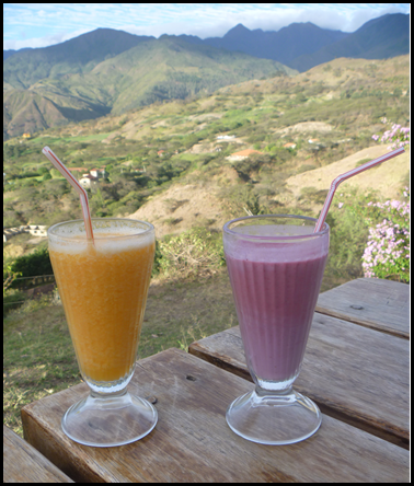 tree tomato juice, mulberry juice, and a spectacular view in vilcabamba