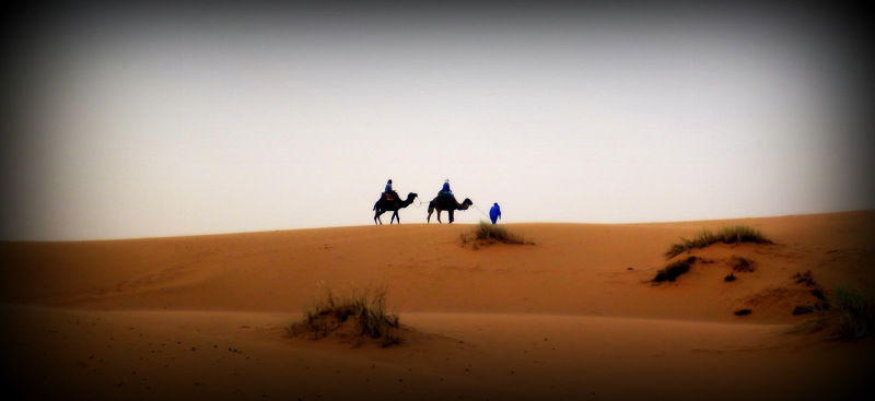 Camel-riding in Merzouga, Morocco
