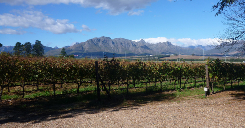 Wine Flies Wine Tours, Cape Town, South Africa