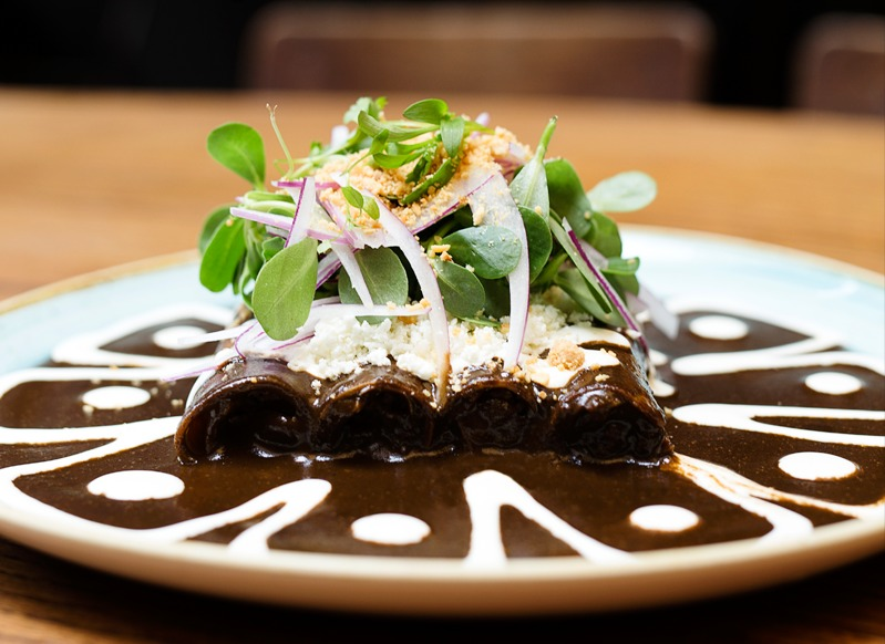 Best Dishes in Mexico City | Duck Enchiladas from La Capitale in Condesa