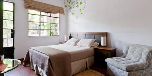 Best Hotels in Mexico City | Condesa Haus Hotel in Condesa