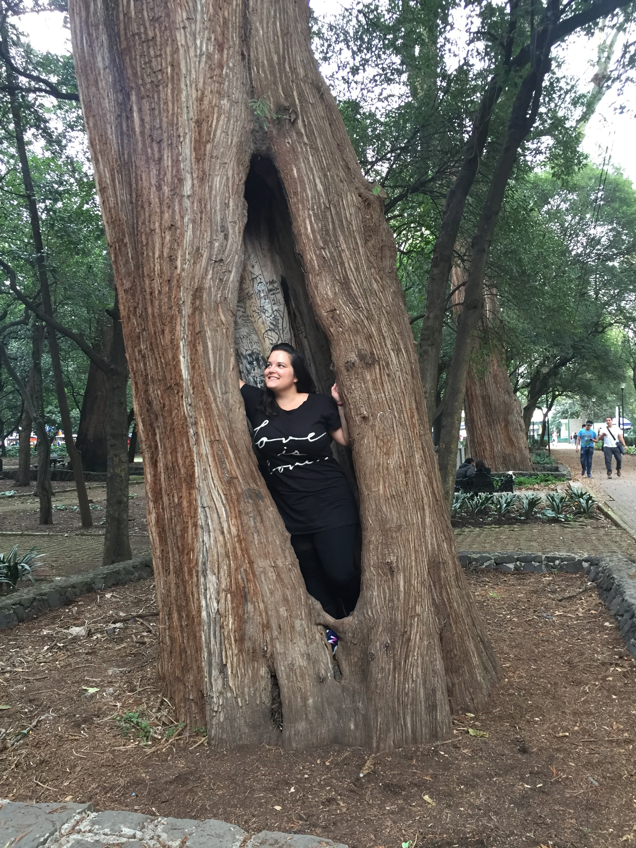 things-to-do-in-mexico-city-visit-bosque-chapultapec